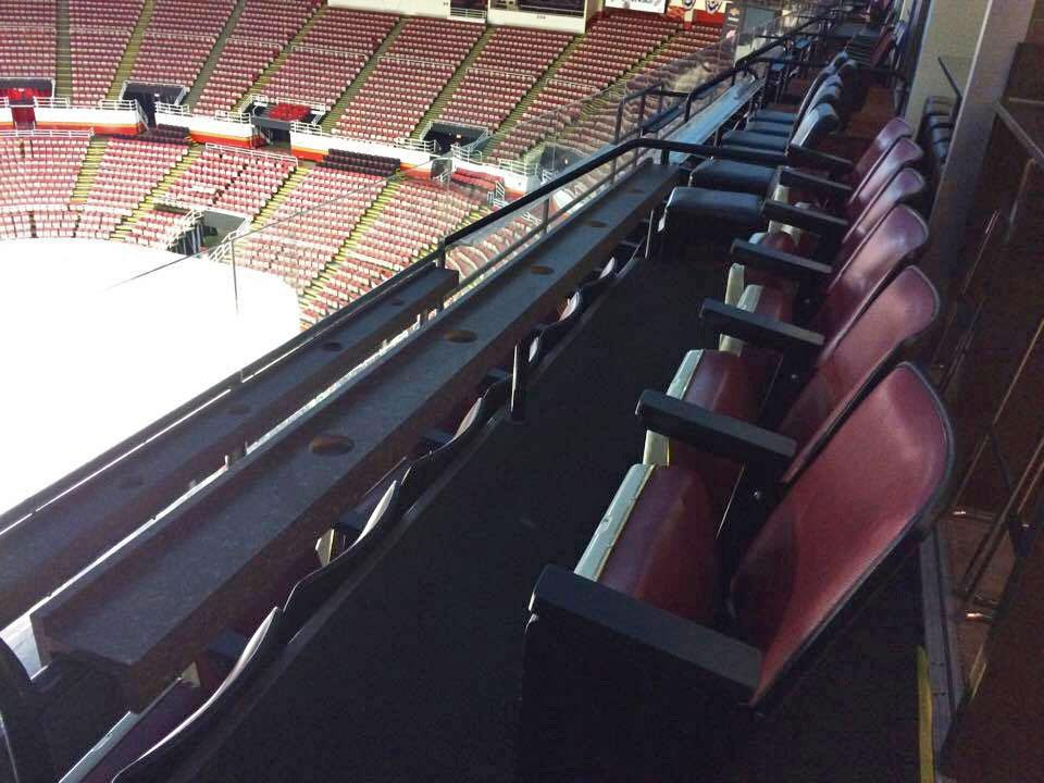 Red Wings Suite Seating